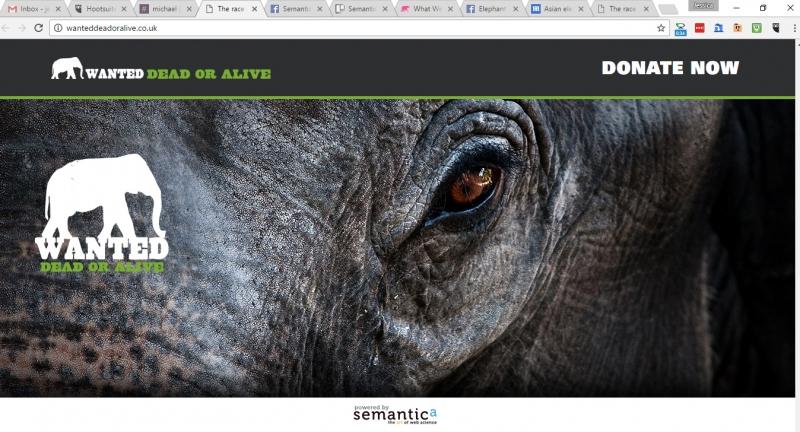 Semantica designs 'Wanted Dead or Alive' Campaign Page