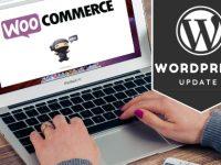 WordPress WooCommerce v3 Update
